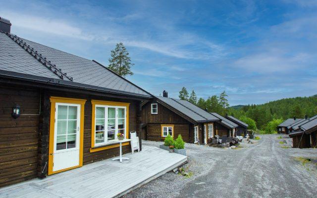 I Funkelia sameie på Kongsberg monterte Stiger til tak like takstiger på over 20 hytter i samme område. Enkel bestilling for kundene og effektiv montering for oss!
